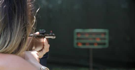 Quietest air rifle